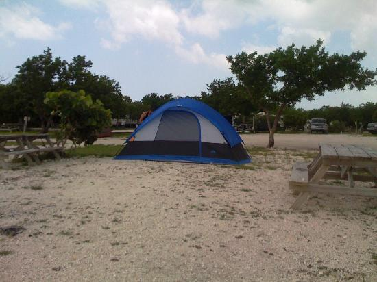 Campsite and tent picture of big pine key fishing lodge for Big pine key fishing lodge