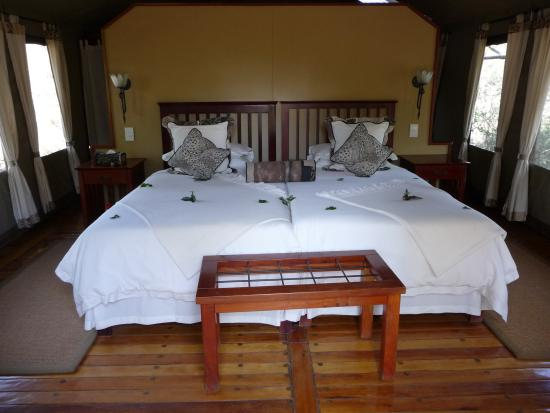 Photo of Motsentsela Tree Lodge Maun