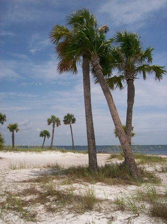 Panama City, Floride : View from private island at the Bay Point Marriott
