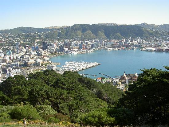 Homestay at Evans Bay: City of Wellington