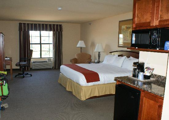 Holiday Inn Express Hotel & Suites: king room