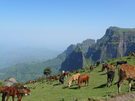 Gonder, Ethiopia: View while driving through Simiens
