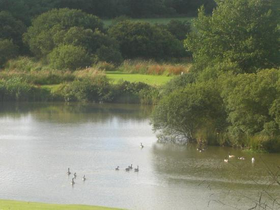 Hartland Forest Golf Parc: the lake