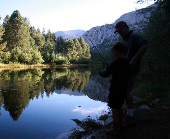 Jackass Meadow Campground: Fishing by Jackass meadows