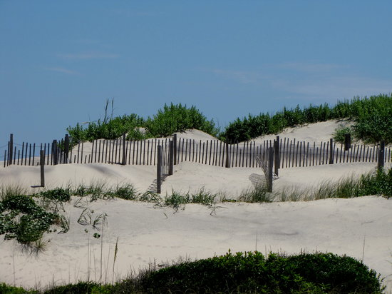 ‪ناجز هيد, ‪North Carolina‬: Dunes @ Pea Island...‬