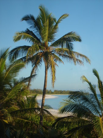 Eleuthera: French Leave from Sundancer to the west