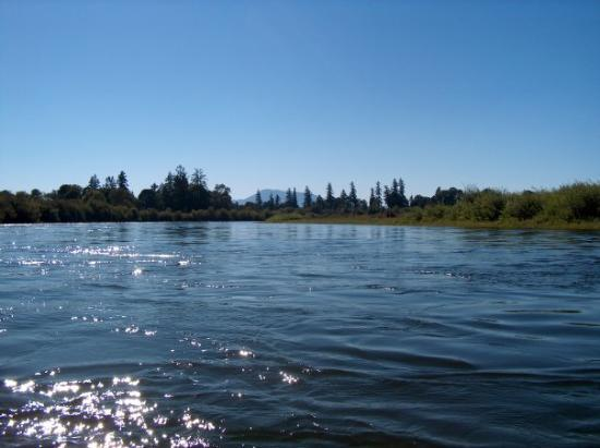 Corvallis, OR: Willamette River with Mary&#39;s Peak in the background
