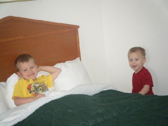 Quality Inn Northlake: my boys enjoying the bed hehe relaxing