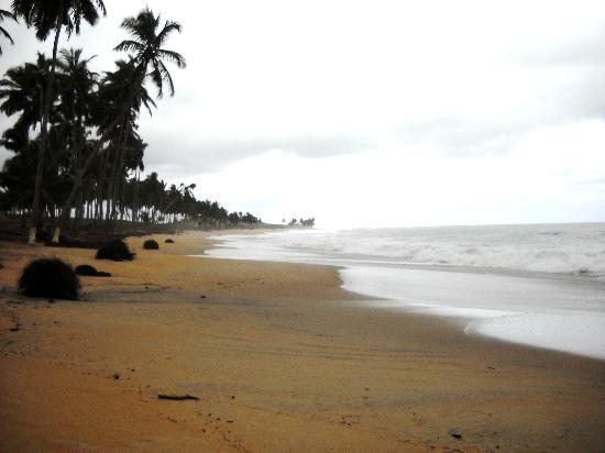 The Almond Tree Guest House: A beach we went to not far from Elmina