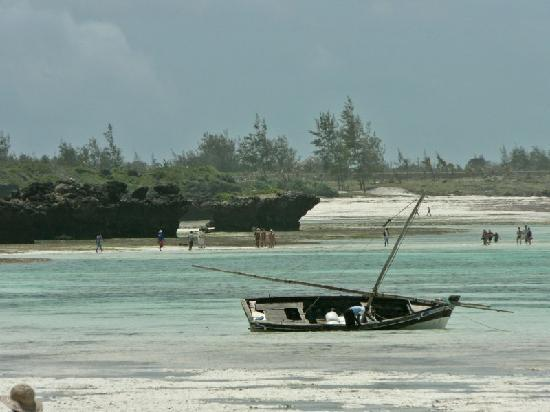 Photo of Watamu Beach Club Malindi