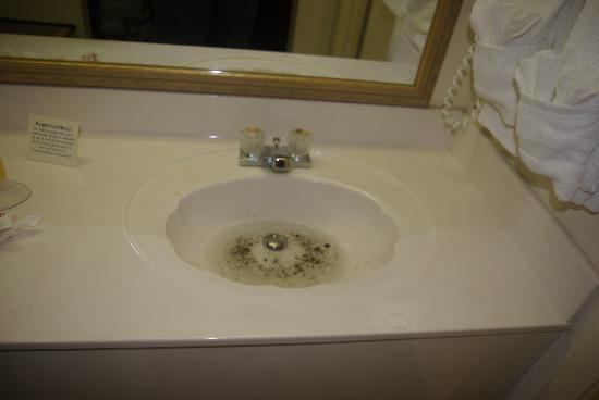 Quality Inn: photo of sink on second floor