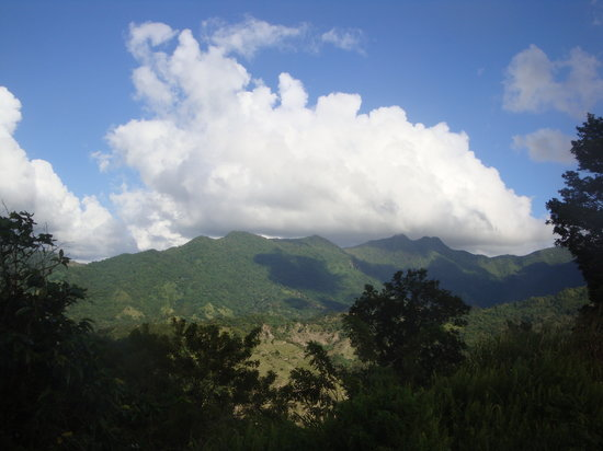 Puerto Rico: Mountain in Jayuya P.R.