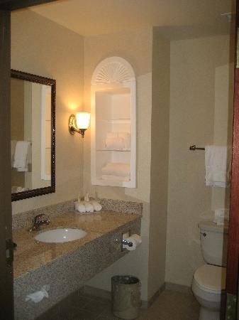 Holiday Inn Express Hotel & Suites Bethlehem Airport - Allentown Area : bathroom