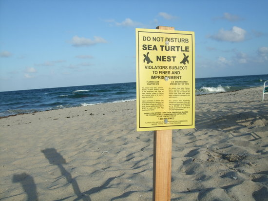 Delray Beach, Floride : preservation efforts..nice!!