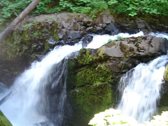 Sol Duc Campground: Falls