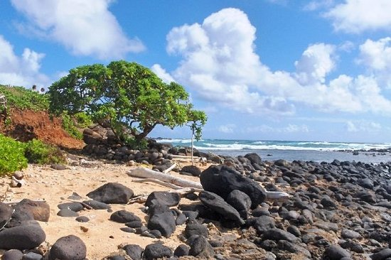 Kapaa, HI: A Lava Rock Beach on Kauai&#39;s East Shore