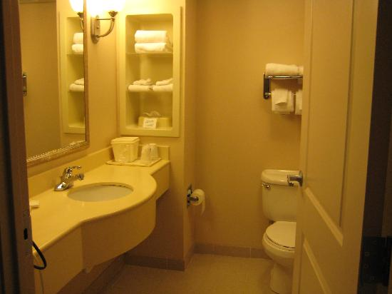 Comfort Inn & Suites Lookout Mountain: Nice restroom