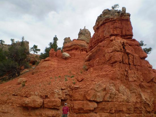Bryce canyon picture of springhill suites by marriott for Marketplace motors devils lake nd