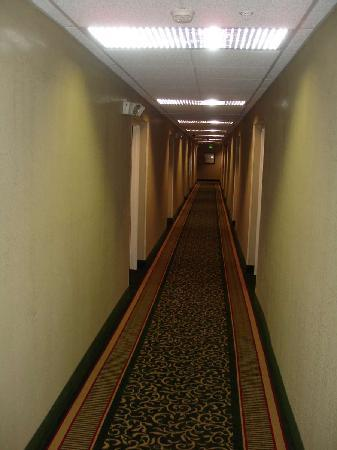 Extended Stay America - Charleston - Airport: Hallway