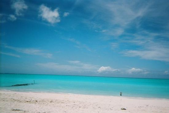 Providenciales: Another Beach here in TCI.....