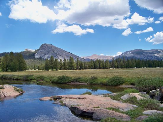 Tuolumne Meadows Campground: Tuolumne Meadows. Like this photo?