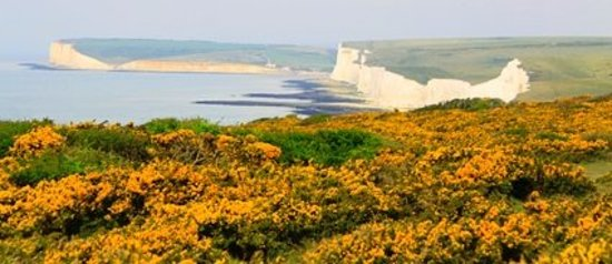 Hotels Near Seven Sisters Country Park