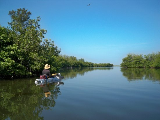Cocoa Beach, FL: Tim Paddling