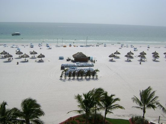 Marco Island, FL: from our room