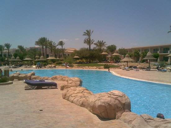 Nabq Bay, Egypt: Piscina Radisson SAS