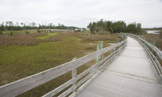 North Carolina: Series of Boardwalks over marshes - interpretive signs along the way