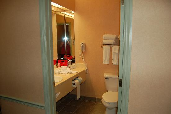 Holiday Inn Express Puyallup (Tacoma Area): bathroom