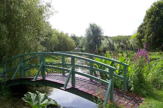 Lacey's Guest House: Bennets Water Gardens - peaceful, elegant and great food
