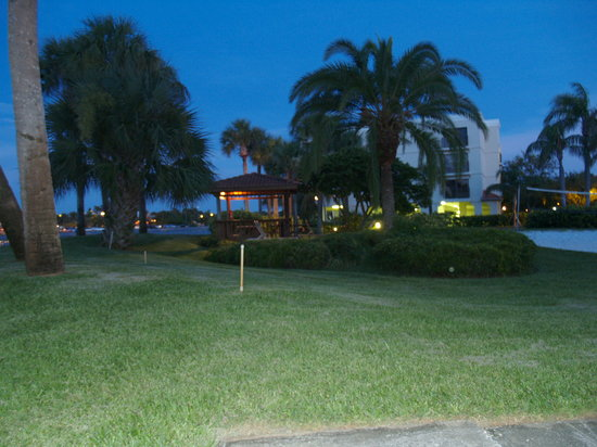 Treasure Island, FL: lush landscaping