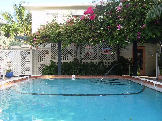 the courtyard picture of el patio motel key west tripadvisor