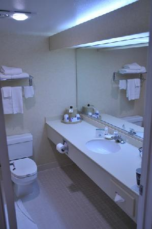 Fairfield Inn Bangor: Bathroom