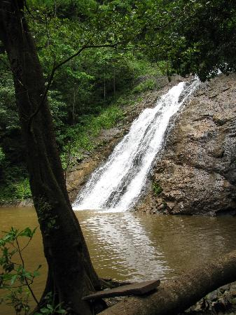 Gilded Iguana Hotel: WATERFALL ON ZIPLINE TOUR