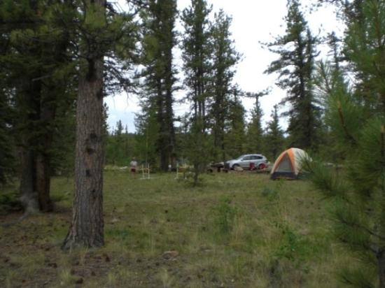 Buffalo Springs Campground South Of Fairplay Co