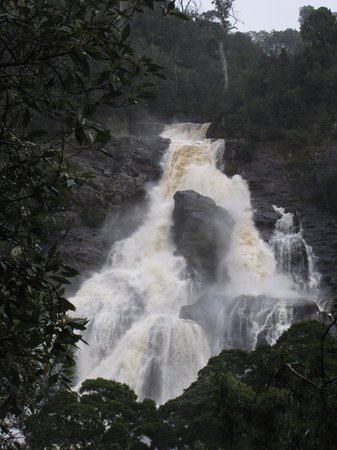 Tasmanien, Australien: After the rain St Columba Falls Aug 2009