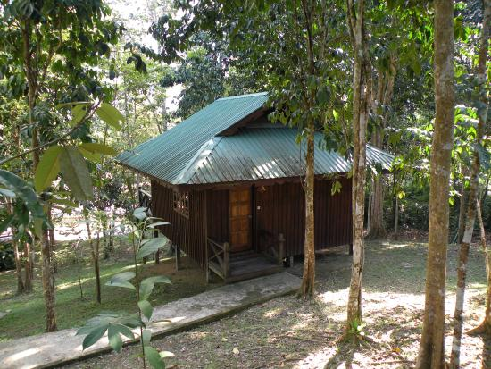Melapi Lodge Sukau
