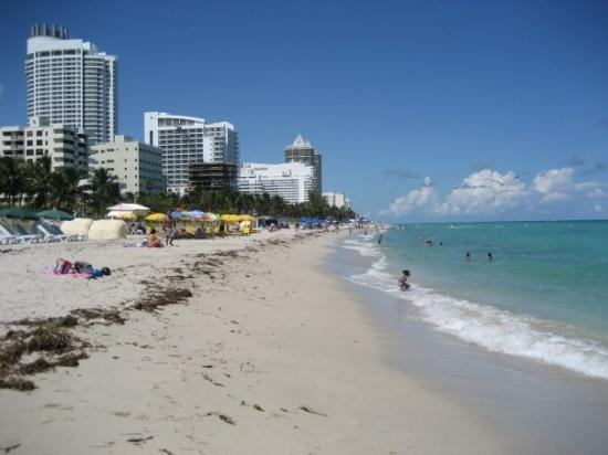 Miami Beach Pictures