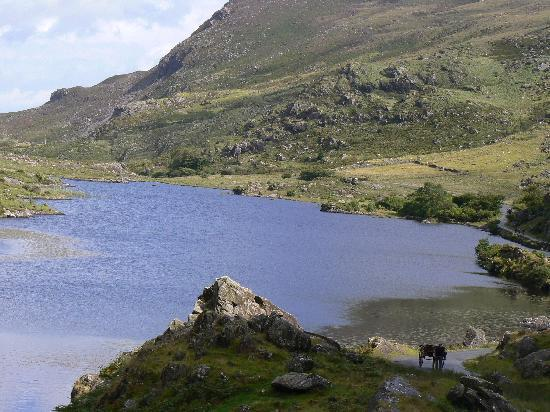 Beaufort Lodge: Lake in Gap of Dunloe - Must See