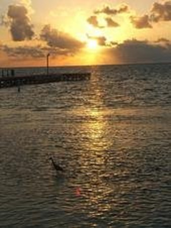 Ambergris Caye, Belize : Sunset in Belize 