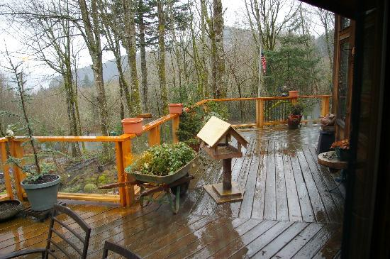 Columbia River Gorge Bed and Breakfast: See the wild birds