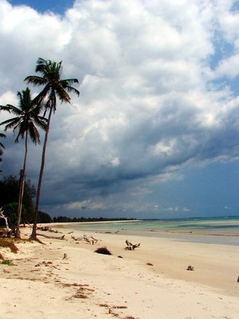 Dar es Salaam, Tanzania: Oh, the beach was awesome. No 3D game is every going to come close to a real tropical beach. Al