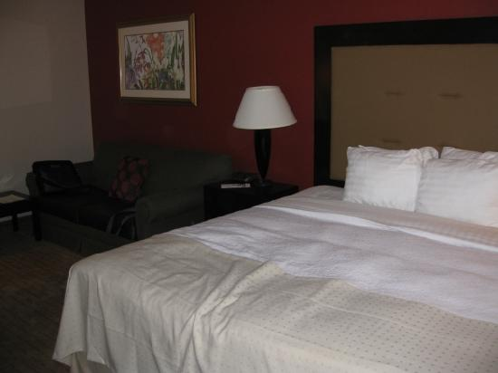 Holiday Inn Conference Center Lehigh Valley: Our room