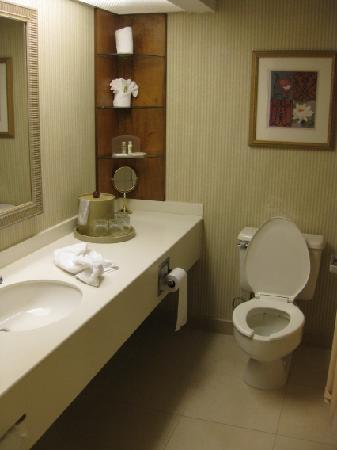 Holiday Inn Conference Center Lehigh Valley: Our bathroom