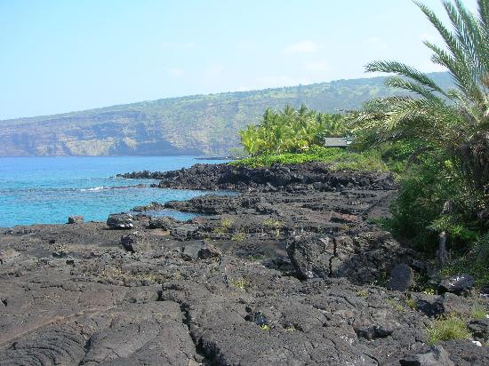 Whale Song Sanctuary : The Lava Beach