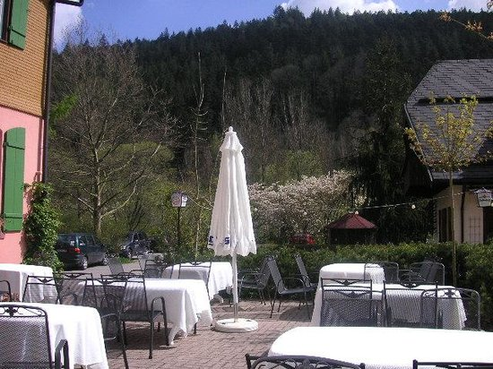 Zur alten Muehle: Outside terrace (lovely staff serverd a late breakfast for us here)