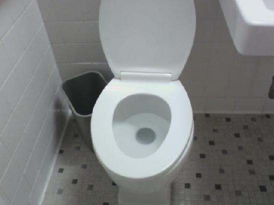Americas Best Value Inn - Hot Springs: brand new toilet...very clean