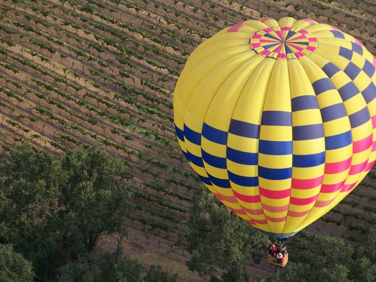 Santa Rosa, Californië: Over the vineyards